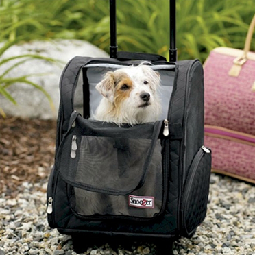 http://www.spotsdogkennel.com/product-category/dog-carriers-and-strollers/