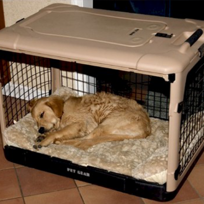 Deluxe Steel Dog Crate With Pad - Thumb